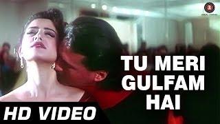 Tu Meri Gulfam Hai | Agni Sakshi [1996] | Manisha Koirala, Jackie Shroff