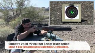 Sumatra 2500 .22 airgun review by AirgunWeb