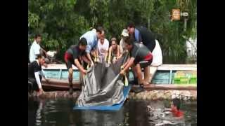 getlinkyoutube.com-Selva Peru - Documental Amazonas - Parte 2 [Full HD 1080p]