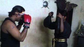 BASIC STRIKES BLACK PANTHER WARRIOR COMBAT MOVES