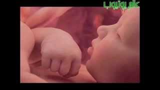 getlinkyoutube.com-شاهد كيف يسبح الجنين في بطن أمه  ! فيديو مذهل