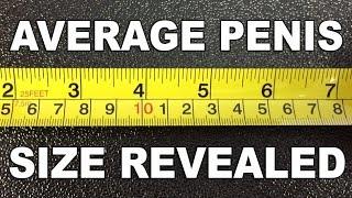 getlinkyoutube.com-Average Penis Size Revealed - The Know