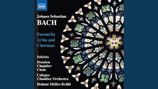 Mass in B Minor, BWV 232: Agnus Dei: Dona nobis pacem