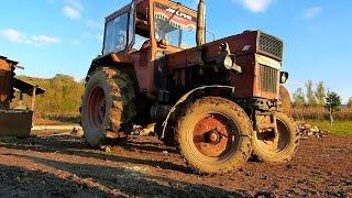 getlinkyoutube.com-Tractor UTB U650M in actiune + Goarna LDE2100 060-DA @Sumal, Judetul Salaj (19 10 2014)