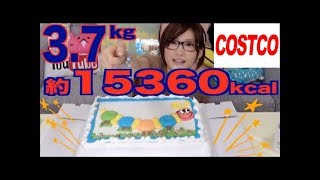getlinkyoutube.com-Kinoshita Yuka [OoGui Eater] Eating a Costco Cake Made for 48 People