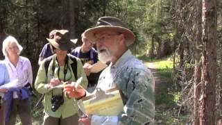 Wild Edible and Medicinal Plants with Michael Pilarski