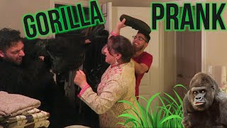getlinkyoutube.com-INSANE GORILLA SCARE PRANK!