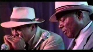 getlinkyoutube.com-John Cephas and Phil Wiggins - Baby, What You Want Me To Do?, Walking Blues (1999)