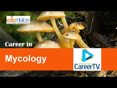 Career in Mycology
