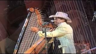getlinkyoutube.com-Avante e Amaury solo de harpa Pajaro Campana