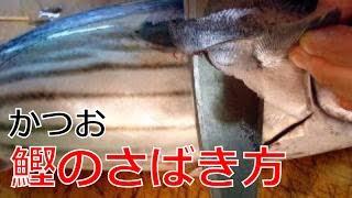 getlinkyoutube.com-かつおのさばき方1/2(Skipjack tuna)