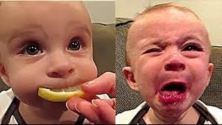 getlinkyoutube.com-Funny Videos That Make You Laugh So Hard You Cry Funny Baby Videos part 1