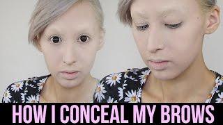 getlinkyoutube.com-How I Conceal My {Dark and Unruly} Eyebrows   Courtney Little