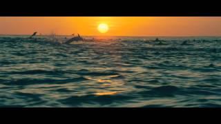 getlinkyoutube.com-DisneyNature: Oceans - Trailer