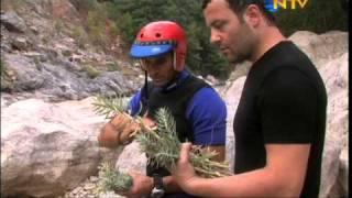 getlinkyoutube.com-Sütleğen otu ile balık avlama tekniği (Fishing with euphorbia plant)