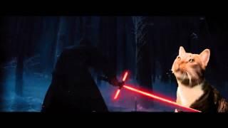 getlinkyoutube.com-The Cat Awakens Star Wars Episode 7 Movie Trailer Parody HD
