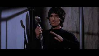 Bruce Lee Tribute 11
