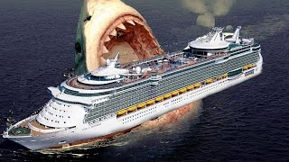 getlinkyoutube.com-10 AMAZING MEGALODON FACTS