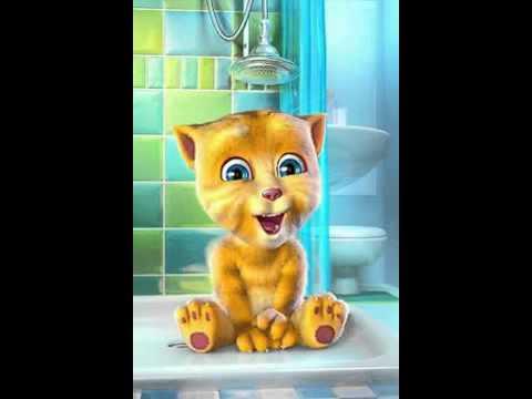 Gatito Cantando Mi Pollito Amarillito