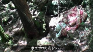 getlinkyoutube.com-青木ヶ原樹海2016 Part2 樹海潜入