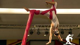 Baila Mundo - Alessandra Fleury - Tecido aéreo (Amigos da Dança: Espetáculo Circo)