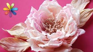 getlinkyoutube.com-Модный, эксклюзивный аксессуар, украшенный цветами – Все буде добре. Выпуск 688 от 15.10.15