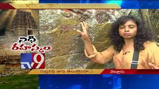 Udayagiri's hidden treasure mystery!    Nellore District    Nidhi Rahasyam - TV9 width=
