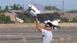 My Cardboard P-40 Warhawk