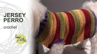 getlinkyoutube.com-Tutorial Jersey Para Perro Crochet o Ganchillo