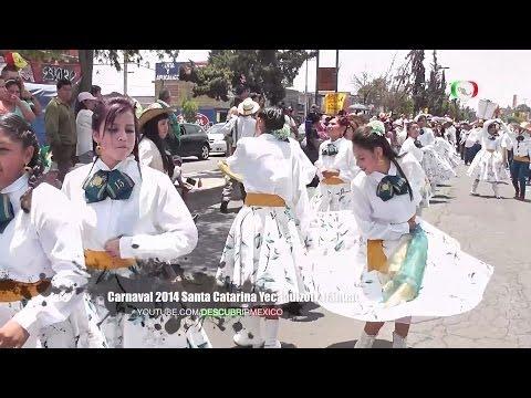 Carnaval Santa Catarina Yecahuizotl 2014 Tláhuac [Full HD]