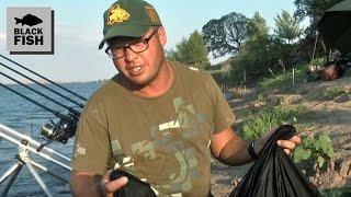ловля карпа осенью видео с алексеем фадеевым