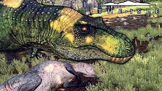 The Isle - REX TERRITORY BATTLE WITH GIGA, STALKING CARNO, HUNTING ACRO & MORE! ( Realism Gameplay )