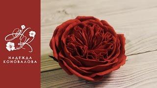 getlinkyoutube.com-Как сделать пионовидную розу розу Девида Остина из фоамирана   подробный мастер класс