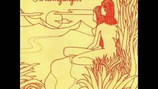 Ash Ra Tempel   Schwingungen 1972  Full Album wmv