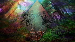 getlinkyoutube.com-Dark Forest Psy Trance Mix 2015