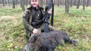 getlinkyoutube.com-Wild boar hunting in Poland, drivjagt Polen - (www.ultimatehunting.eu)