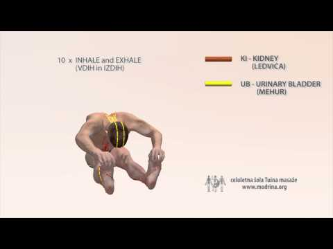 Exercise for meridians of KIDNEY and URINARY BLADDER - Vaja za odpiranje meridijana KI in UB