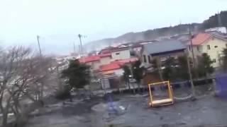 getlinkyoutube.com-Extraña criatura emerge del tsunami de Japón