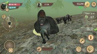 getlinkyoutube.com-Wild Panther Sim 3D Android Gameplay #13