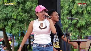 Ditinggal Rabi   Andari OM.PANDAWA Live Gor Purbalingga