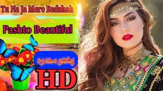 Pashto New Song Tu na Ja mere Badsha in Pashto Version Must Watch