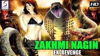 Zakhmi Nagin - Ek Revenge - Dubbed Hindi Movies 2018 Full Movie HD l Rajendra, Babu, Payal