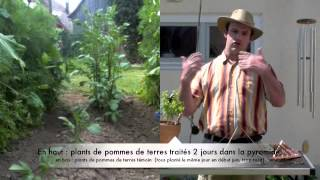 getlinkyoutube.com-Electroculture Pyramide - Utiliser une pyramide pour les plantes