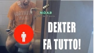 getlinkyoutube.com-CAGANDO MOAB! (video speciale) Dexter fa tutto