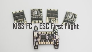 getlinkyoutube.com-Testing KISS FC & ESC on NOX5 with no tuning - LIPO on Fire