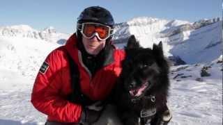getlinkyoutube.com-Banff National Park - Cazz the Avalanche Dog