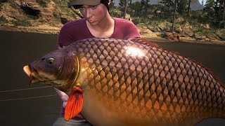 Dovetail Games Euro Fishing Gameplay #2 MULTI BIG CARP AND CATFISH Silure HD PC