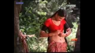 anushka shetty hot  video