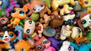 Littlest Pet Shop Trade 2015 (CLOSED FOR NOW)