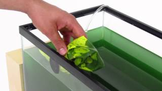 getlinkyoutube.com-Grow Spirulina at Home: Kickstarter Video
